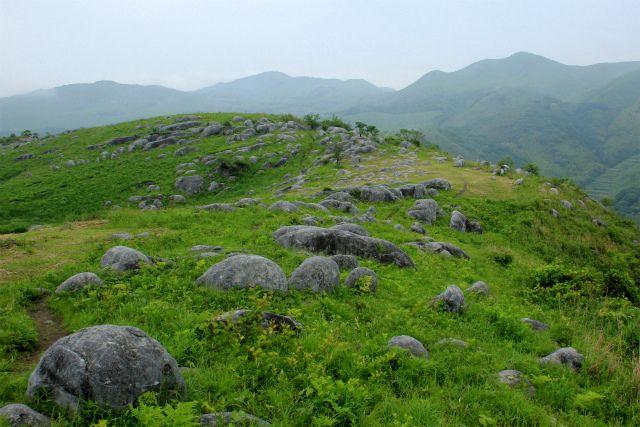 山口のカルスト台地