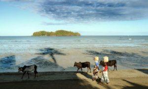 マダガスカル南西部5つのダイビングができる隠れリゾート