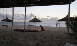 マダガスカル(16)アナカウでの素敵な出会いと避けては通れない現実