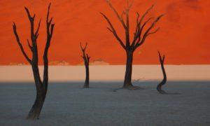 """ナミビア(12)美しい""""赤""""に心奪われた! 旅の記録をまとめます"""
