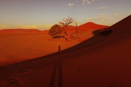 ナミブ砂漠_DUNE45