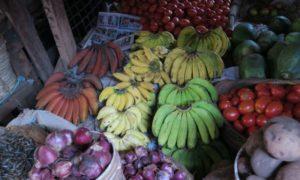 タンザニア(3)アルーシャで手配! 私好みのサファリへさっそく出発
