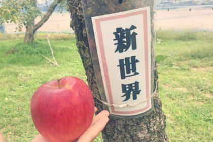 新世界_りんご