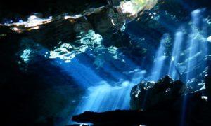メキシコ(37)セノーテダイビング再び&【悲報】水中カメラがぶっ壊れる
