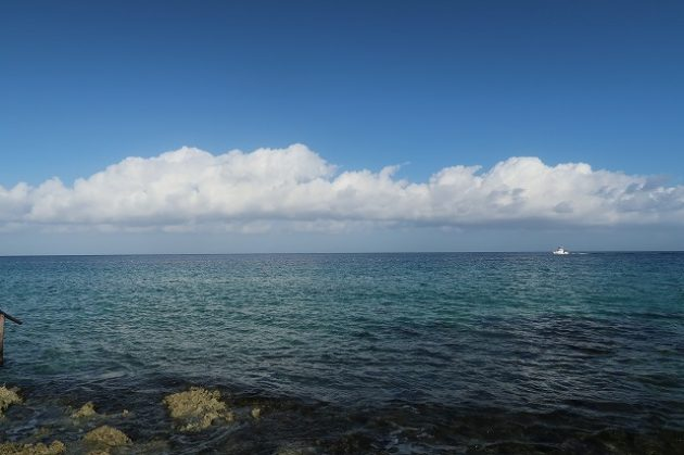 Sky Reef