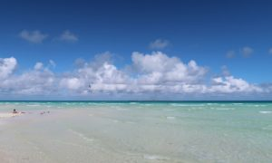 キューバ(21)レメディオスから行く極上ビーチ「カヨ・サンタマリア」