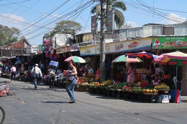サンタテクラ