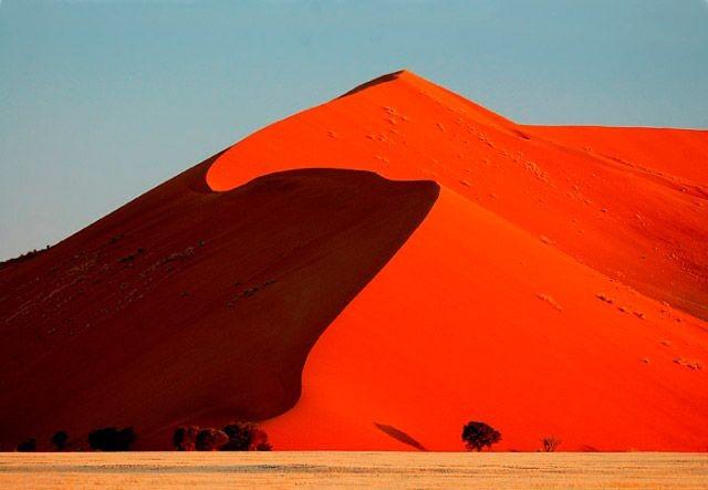 ナミブ砂漠デューン45