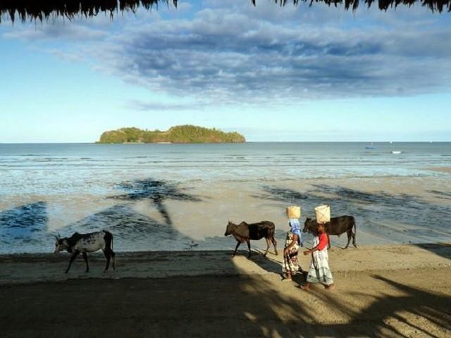 マダガスカル南西部 5つのダイビングができる隠れリゾート