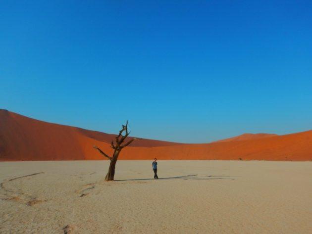 ナミブ砂漠_デッドフレイ