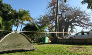 モザンビーク(6)バオバブの隣でテント泊! ヴィランクーロの宿到着