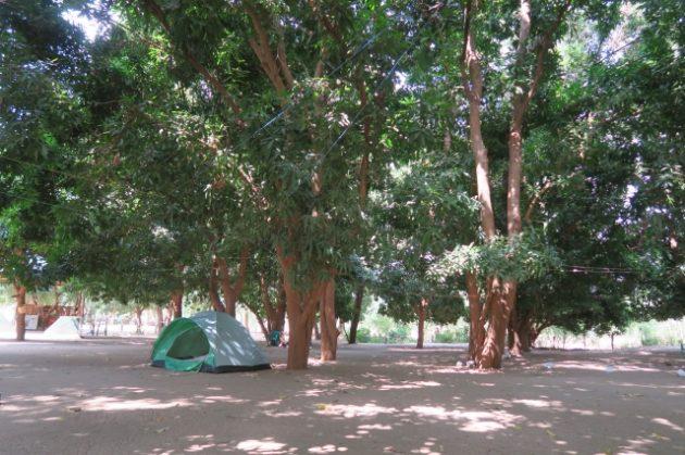 マンゴーキャンプサイト(Mango Campsite)