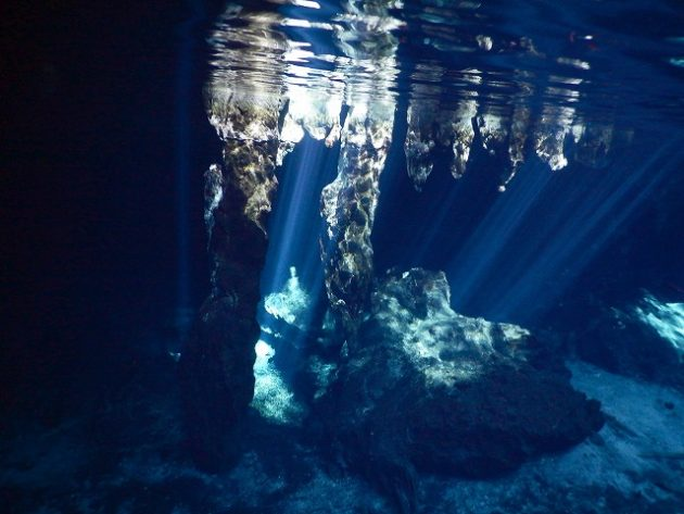 Gran Cenote(グランセノーテ)