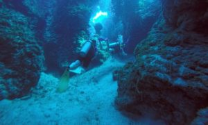 メキシコ(42)コスメル島ダイビング! 世界一と噂の海に潜った感想は!?