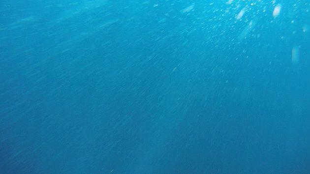 ウティラ_ダイビング