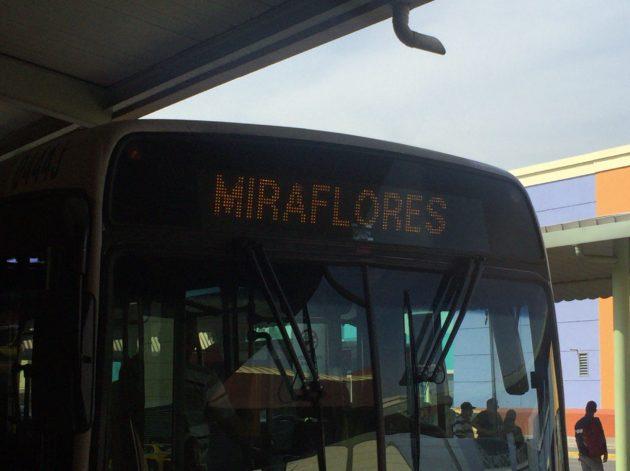 ミラフローレス_バス