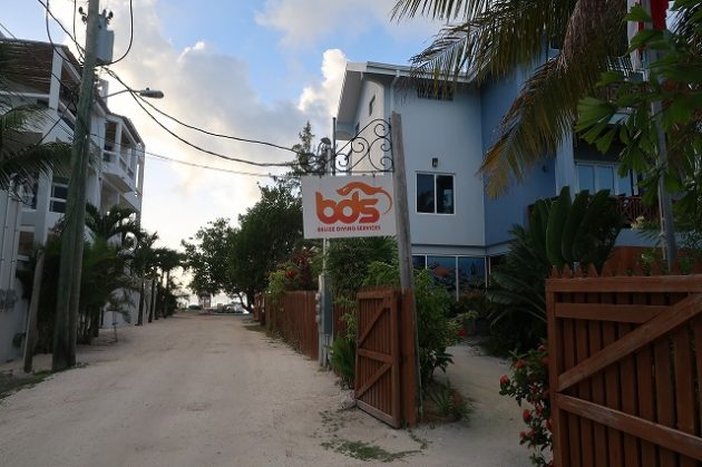 BELIZE DIVING SERVICES(ベリーズダイビングサービス)
