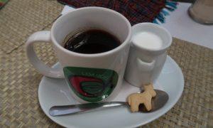 ホンジュラス(7)おすすめ! おいしいコパンコーヒーとアンティグアへの道のり