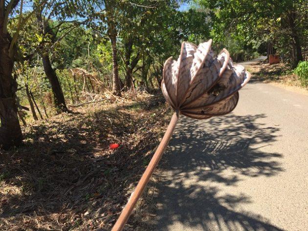 Ecolodge Deseo Bamboo
